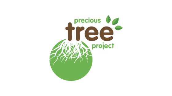 precious tree project npo garden route south africa