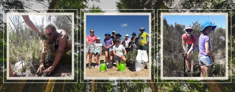 An Inspirational Family Planting Trees on Holiday