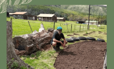 What we do Matters - Precious Tree Project