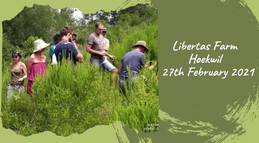 The Bigger Business of Assisted Reforestation -Libertas Frm 27 February 2021 - Precious Tree Project
